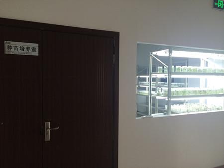 技术咨询:提供植物组培工厂化育苗组培室建设方案设计,组培室生产